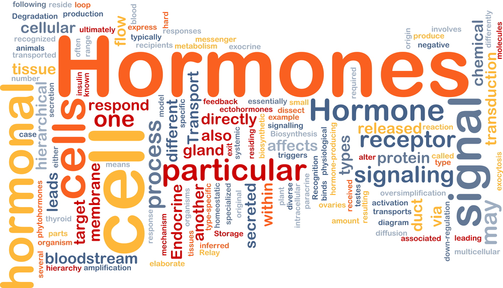 How To Balance Your Hormones To Lose Weight