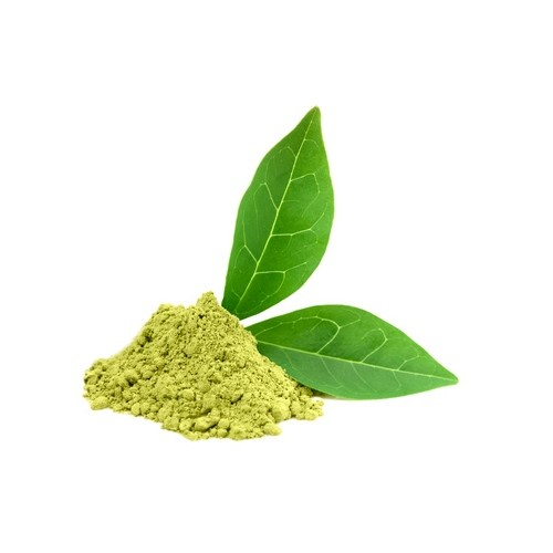Green Tea Extract helps in weight loss