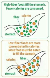 fiber consumption for menopause